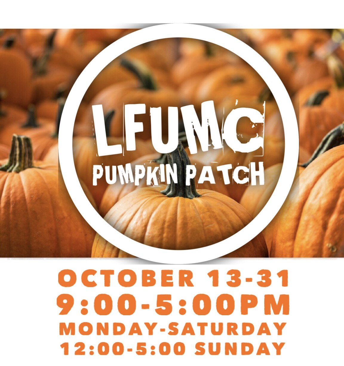 PUMPKIN PATCH IS BACK!